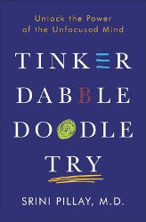 TINKER DABBLE DOODLE TRY: Unlock the Power of the Unfocused Mind by Srini Pillay, M.D.